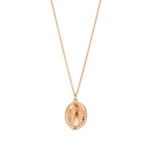 Halskette Cowrie Shell, 60 cm, 18 K Rosegold vergoldet