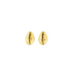 Ohrstecker Cowrie Shell, 18 K Gelbgold vergoldet